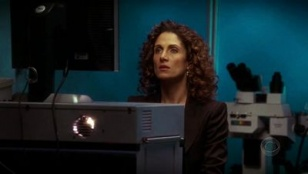 CSI: NY 01x17 : The Fall- Seriesaddict